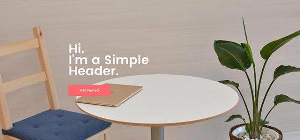 basic template 1 600x280 - Basic Website