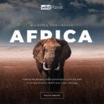 f2 150x150 - Cinematic Wildlife Slider